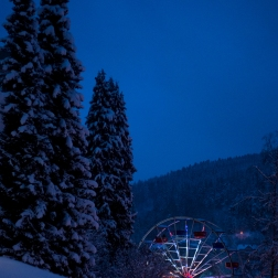 amusement wheel by the firs